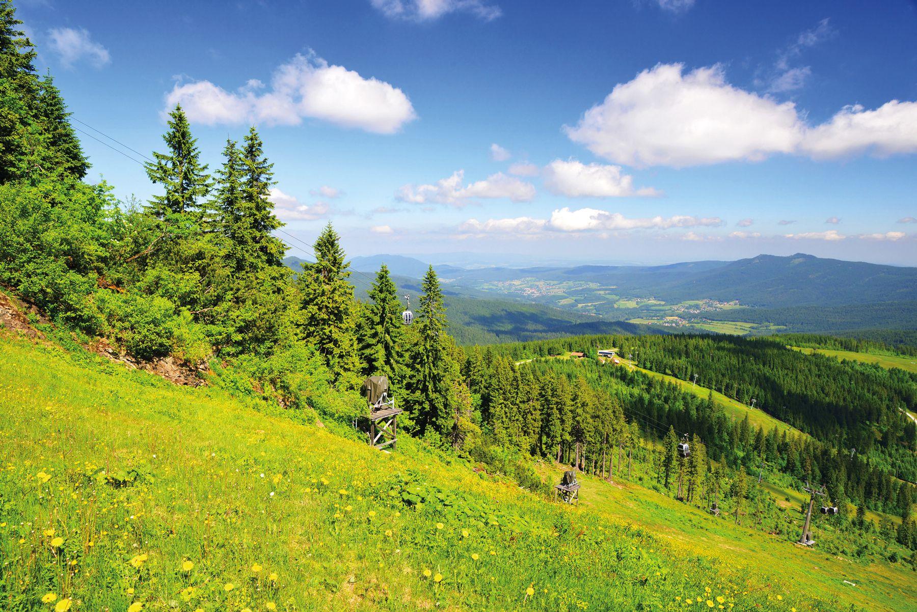Blick vom Berg Grosser Arber Bayerischer Wald iStock918609002 web