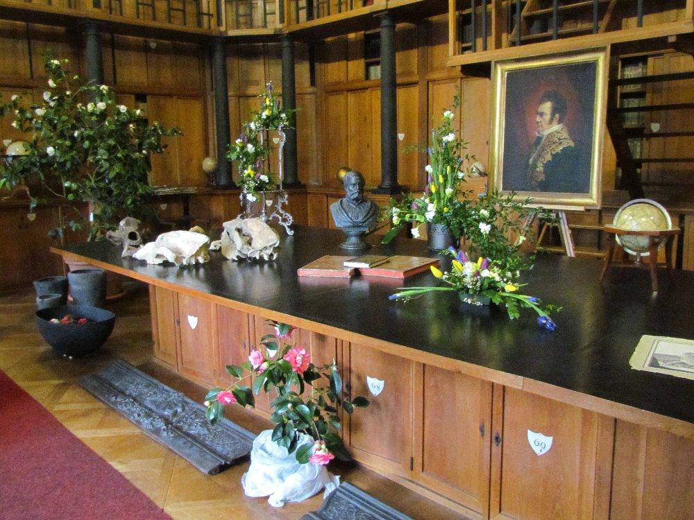 Kamelienausstellung Schloss Rajec4 Nationalinstitut fur Denkmalpflege Tschechische Republik